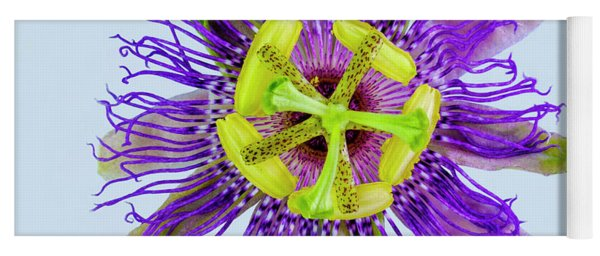 Expressive Yellow Green And Violet Passion Flower 50674b Yoga Mat