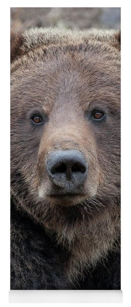 Face Of The Grizzly Yoga Mat