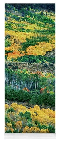 Fall Color In The Eastern Sierras California Yoga Mat