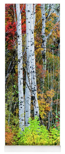 Fall Colors Yoga Mat