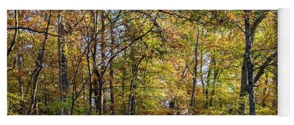 Yoga Mat featuring the photograph Fall Colors Of Rock Creek Park by Ed Clark