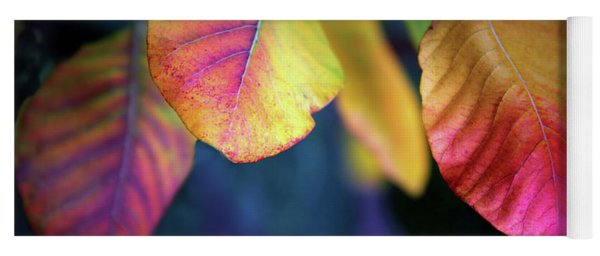 Fall Foliage Yoga Mat