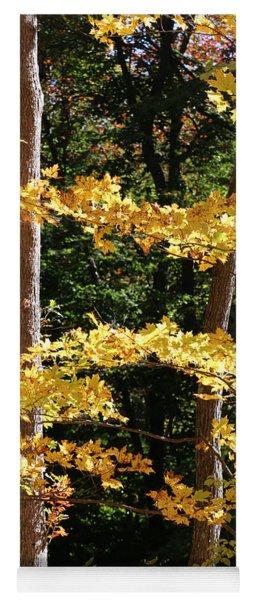Fall Forest 1 Yoga Mat