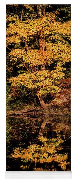 Fall In Maryland Yoga Mat