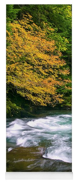 Fall On The Clackamas River, Or Yoga Mat
