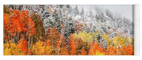 Fall To Winter Canvas Print, Photographic Print, Art Print, Framed Print, Greeting Card, Iphone Case Yoga Mat