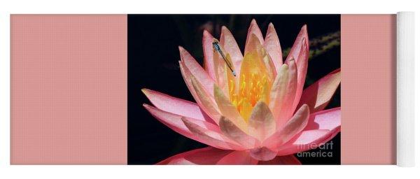 Familiar Bluet Damselfly And Lotus 2 Yoga Mat