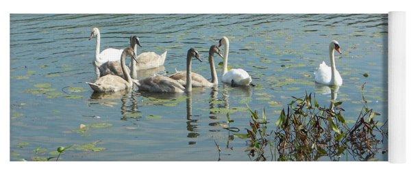 Family Of Swans Yoga Mat