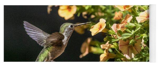 Female Broad-tailed Hummingbird And Orange Miniature Petunias Yoga Mat