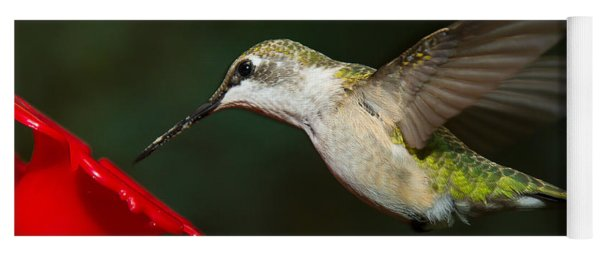 Yoga Mat featuring the photograph Female Ruby-troated Hummingbird by Robert L Jackson