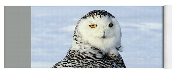 Female Snowy Owl Yoga Mat
