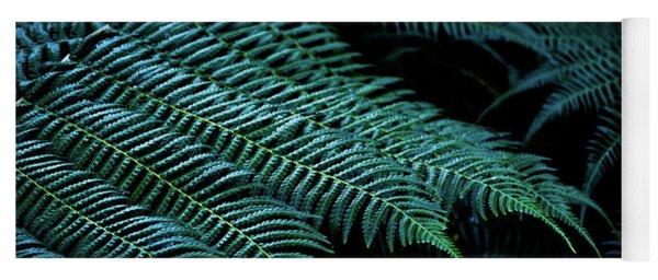 Patterns Of Nature 6 Yoga Mat