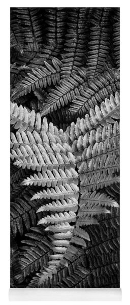 Fern In Black And White Yoga Mat