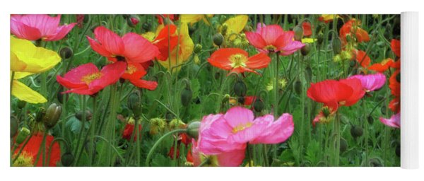 Field Of Poppies Yoga Mat