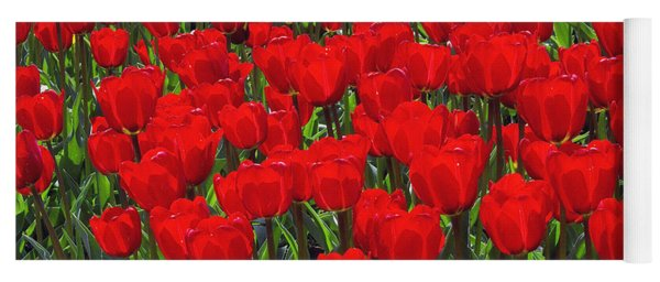 Field Of Red Tulips Yoga Mat