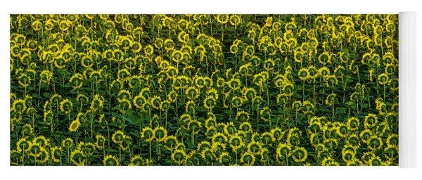 Field Of Sunflowers Yoga Mat