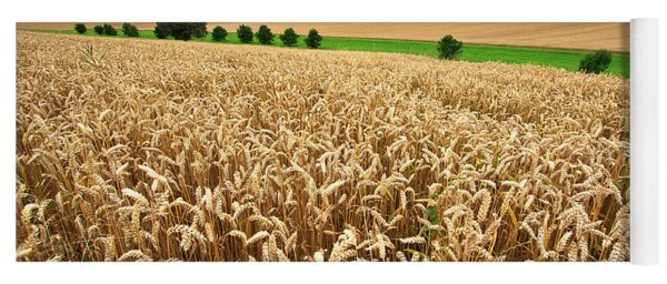 Field Of Wheat Yoga Mat
