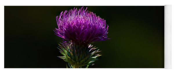Field Thistle Yoga Mat