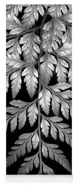 Yoga Mat featuring the photograph Filigree Fern II by Jessica Jenney