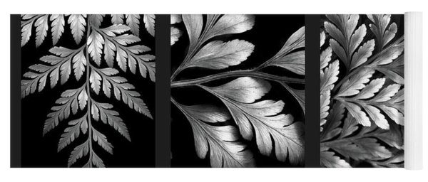 Yoga Mat featuring the photograph Filigree Fern Triptych by Jessica Jenney