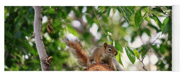 Find The Squirrel  Yoga Mat