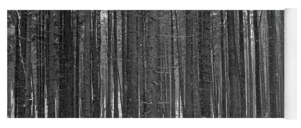 Yoga Mat featuring the photograph Ways In A Dark Woods by Dubi Roman