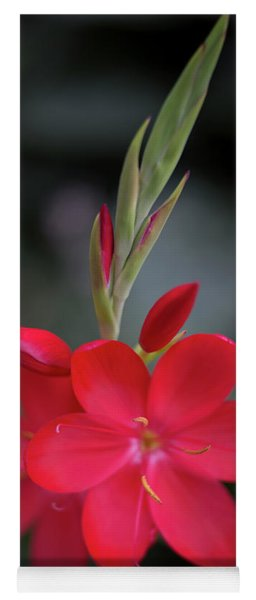 Fire Lily 2 Yoga Mat