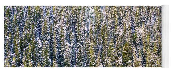 First Snow On Trees Yoga Mat