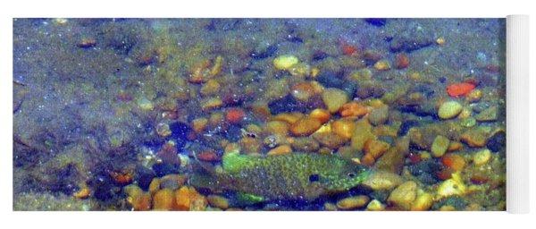 Fish Spawning Yoga Mat