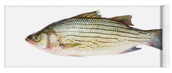 Fish Yoga Mat