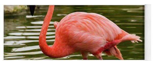 Flamingo Wades Yoga Mat