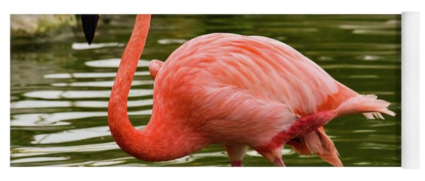 Yoga Mat featuring the photograph Flamingo Wades by Nicole Lloyd