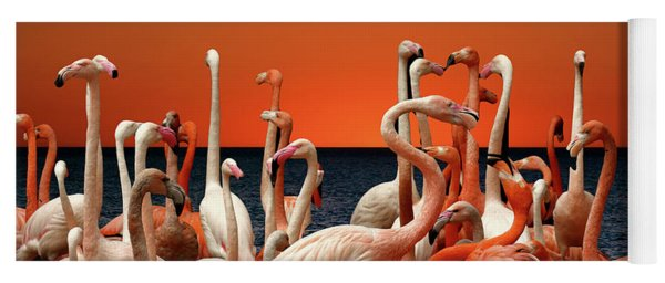 Yoga Mat featuring the photograph Flamingos At The Cape by Ericamaxine Price