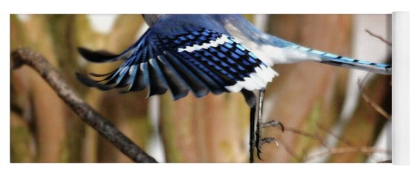 Flight Of The Blue Jay Yoga Mat