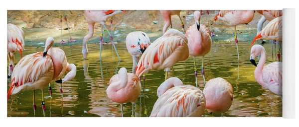 Flock Of Flamingos Yoga Mat