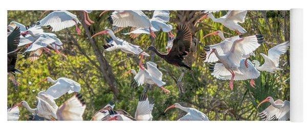 Flock Of Mixed Birds Taking Off Yoga Mat
