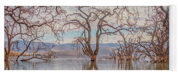 Flooded Trees At Los Vaqueros Yoga Mat