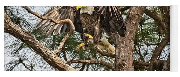 Florida Adult Bald Eagle  Yoga Mat
