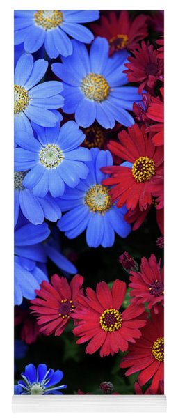 Florists Cineraria Flowers Yoga Mat