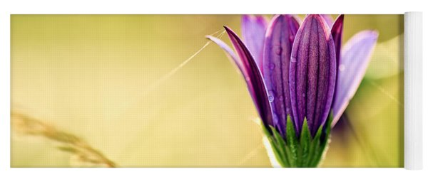 Flower On Summer Meadow Yoga Mat