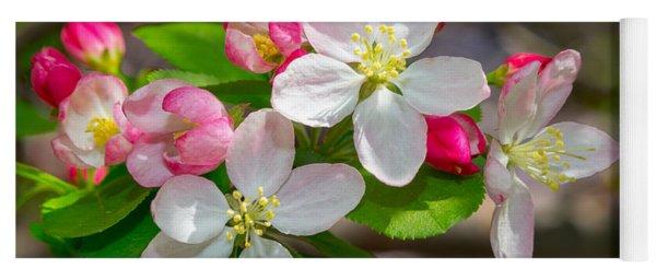 Flowering Cherry Tree Blossoms Yoga Mat