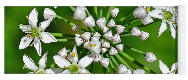 Flowering Garlic Chives Yoga Mat