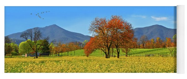 Flowering Meadow, Peaks Of Otter,  Virginia. Yoga Mat
