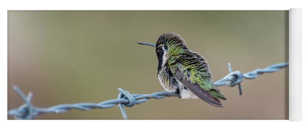 Fluffy Hummingbird Yoga Mat