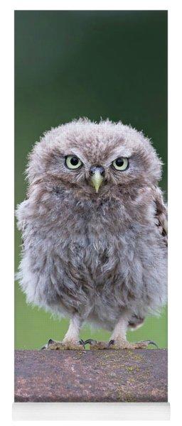 Fluffy Little Owl Owlet Yoga Mat