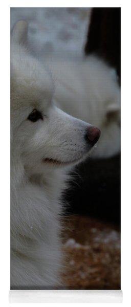 Fluffy Snow Dog Yoga Mat
