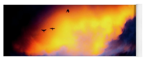Yoga Mat featuring the photograph Fly Away by Eric Christopher Jackson