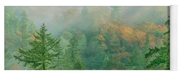 Yoga Mat featuring the photograph Foggy Morning In Humbolt County California by Dave Welling