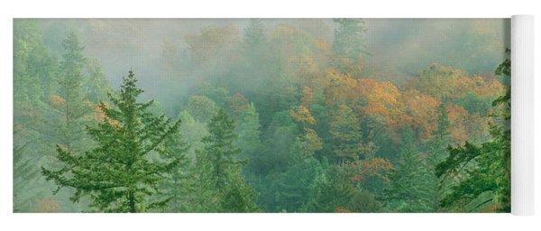 Foggy Morning In Humbolt County California Yoga Mat