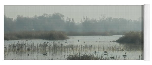 Foggy Wetlands Yoga Mat